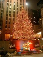 Rockefeller jõulupuu